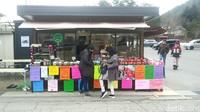 Ini Dia Desa di Kaki Gunung Fuji yang Indonesia Banget