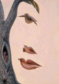 Tes: Sarang Burung atau Wajah Wanita, Gambar Pertama yang Kamu Lihat?