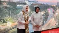 Suhu Surabaya Turun Dua Derajat, Kepala BMKG Sebut Ini Fenomenal