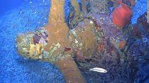 Wow! 76 Tahun Hilang, Pesawat Perang Dunia II Ditemukan di Samudra Pasifik