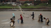Menjala Ikan di Tengah Sawah yang Kebanjiran