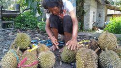 Eni, Penyandang Difabel Jual Durian di Blitar yang Sangat Mandiri
