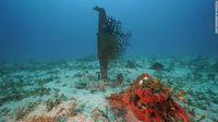 76 Tahun Hilang, Pesawat Perang Dunia II Ditemukan di Samudra Pasifik