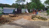 Pohon Beringin Tumbang Depan Monas Dievakuasi, Lalu Lintas Kembali Lancar