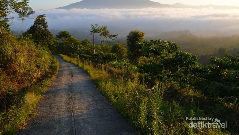 Kaki gunung Pesagi