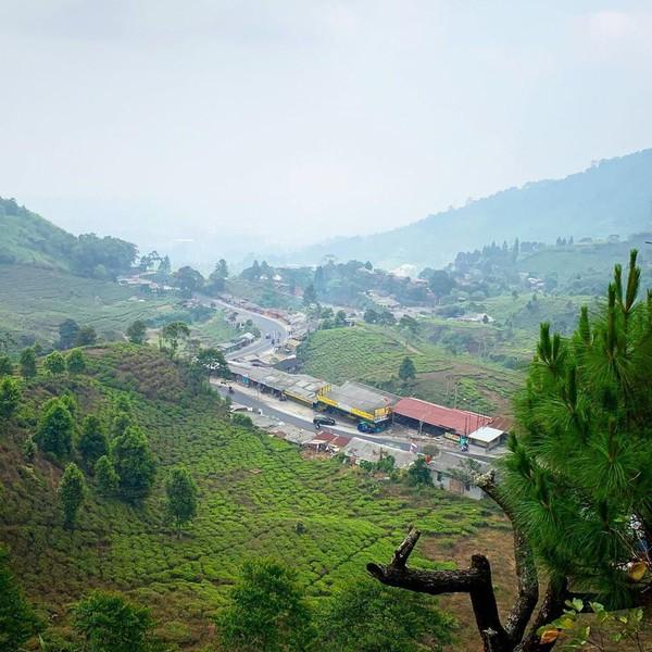Pemandangan dari Rindu Alam Puncak. Di saat cerah, traveler yang berkunjung akan disuguhi lanskap hijau karena posisinya yang strategis (Foto: istimewa)