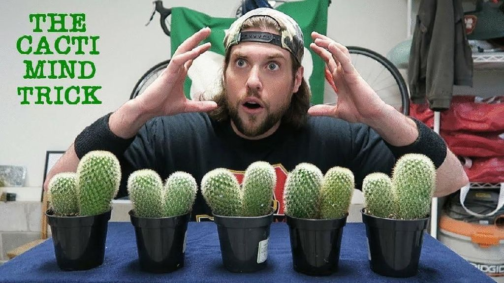 Demi Subscribers, Para YouTuber Ini Rela Makan Kaktus hingga Sampah