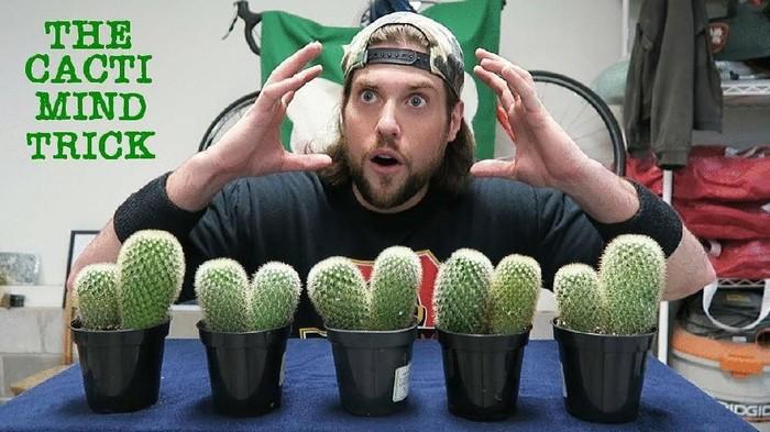 Youtuber Sampah kaktus