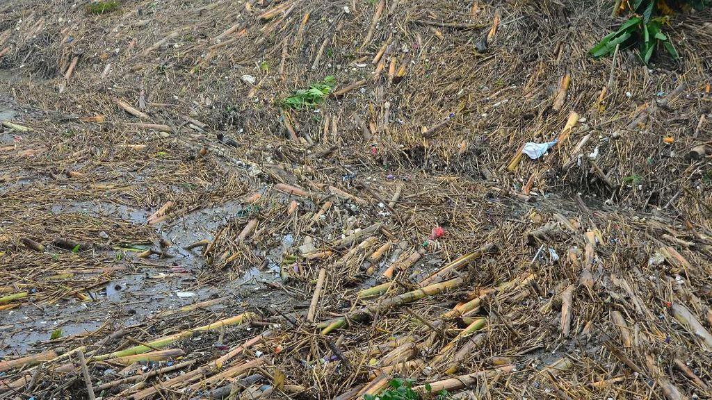 Gunungan Sampah Penuhi Bendungan Wilalung di Kudus