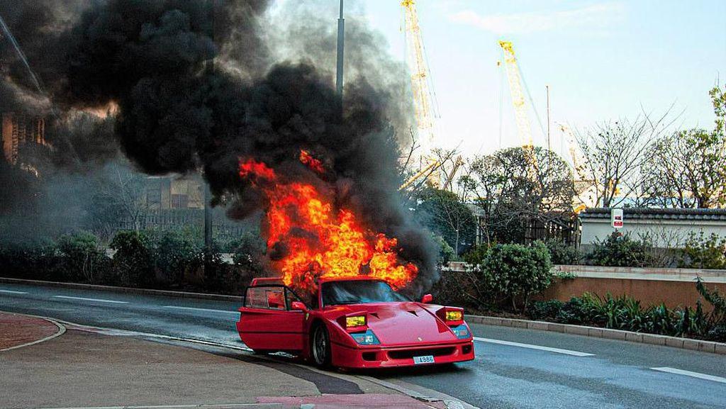 Pria Ini Mau Selamatkan Ferrari Rp 18 M yang Terbakar...Pakai Selang Penyiram Tanaman