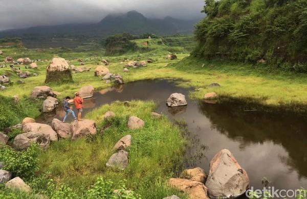 Salah seorang warga Ngoro, Ajeng, mengatakan padang rumput yang eksotis itu dulunya bekas tambang galian C. Dalam musim hujan tahun ini, lahan bekas tambang itu ditumbuhi rerumputan.