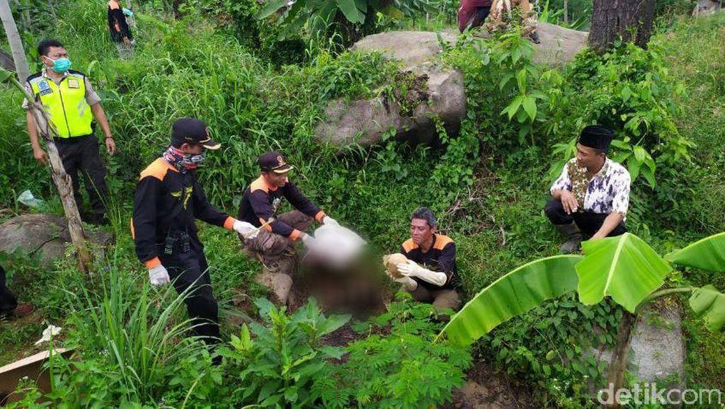 Kerangka Berserakan Pemalang Diduga Wanita yang Tinggal di Pinggir Hutan