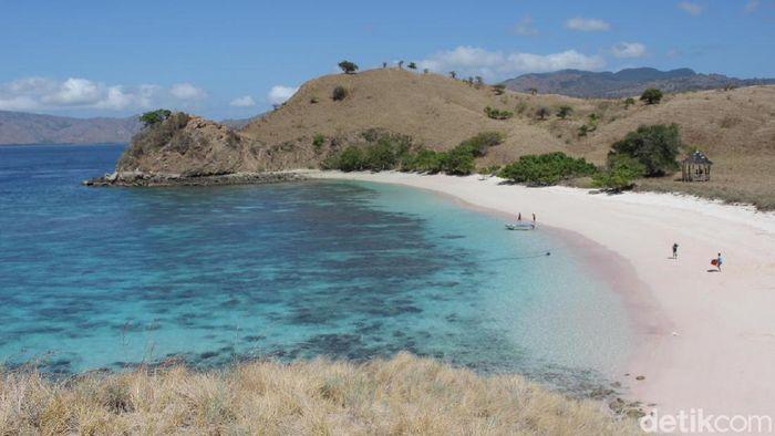Pantai Pink di Taman Nasional Komodo