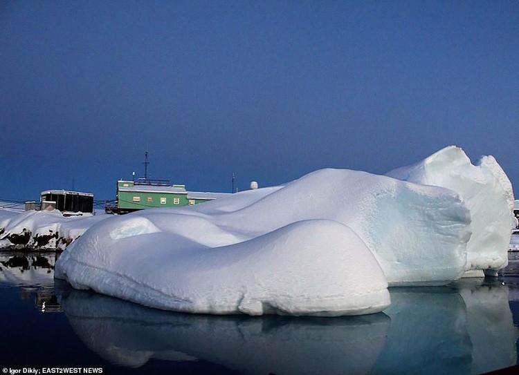 Salju Merah Antartika