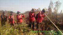 Sudah 3 Hari, Karhutla di Dumai Riau Masih Belum Padam