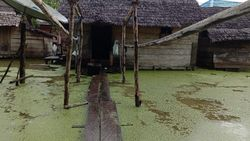 Banjir Warna Hijau Rendam Desa di Seram Barat, 716 Warga Mengungsi