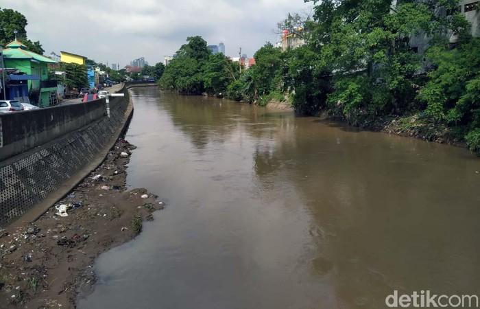 Permasalahan pembebasan lahan masih jadi hambatan utama mandeknya proyek normalisasi kali Ciliwung. Proyek ini sendiri dinilai dapat meminimalisir banjir di Jakarta.