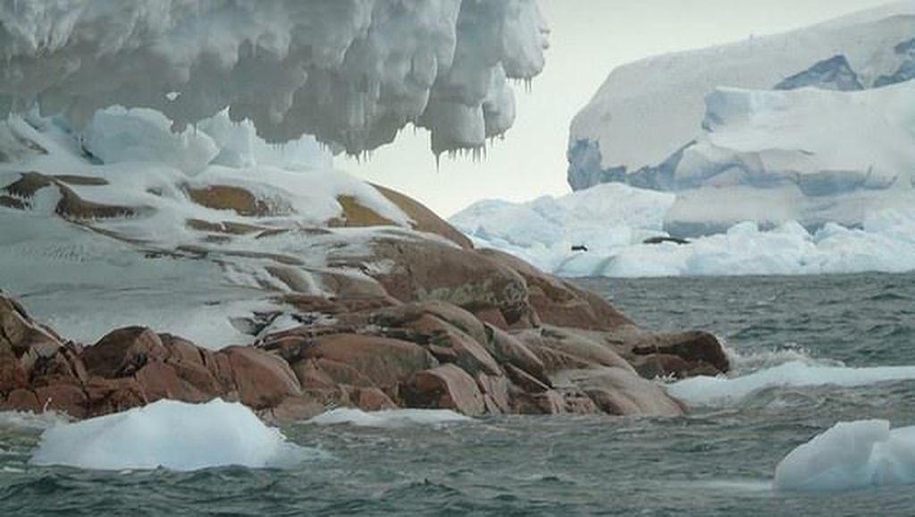 Gawat, 28 Triliun Ton Es Lenyap dari Bumi