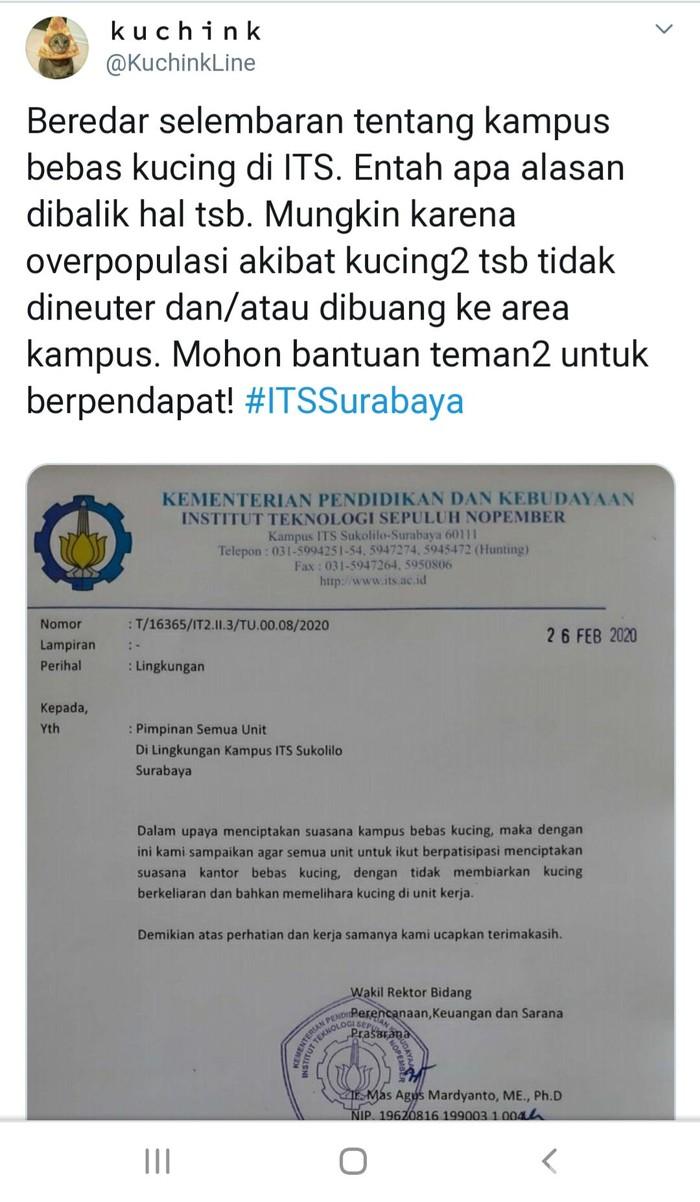 Viral Surat Edaran Area Bebas Kucing di ITS Surabaya