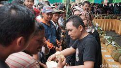 Event Serbu Durian Lumajang Sukses Tarik Ribuan Pengunjung