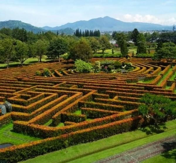Saat ke Bogor Anda bisa berkunjung ke Taman Bunga Nusantara. Tempat ini menawarkan pesona keindahan taman yang sangat indah.Di mana tempat ini sangat fotogenik untuk Anda yang suka berfoto di tempat-tempat kekinian. (Masiatun Abdulhad/dTraveler)