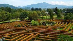 Mumpung Akhir Pekan Ke Taman Bunga Nusantara, Kuy!