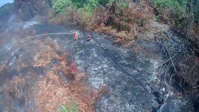Satgas Karhutla dan Manggala Angni melakukan pemadaman karhutla di Dumai, Riau (dok. Istimewa)