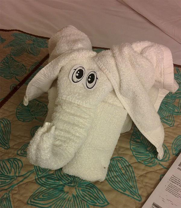 Handuk-handuk ini di tata di kasur, digantung di hanger, di kamar mandi dan juga di sofa kamar. (Twitter)