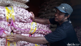 Pemerintah Kesulitan Hadapi Importir Bawang Putih Nakal