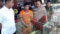 Perdagangan Burung Nuri hingga Kakaktua Terbongkar di Malang