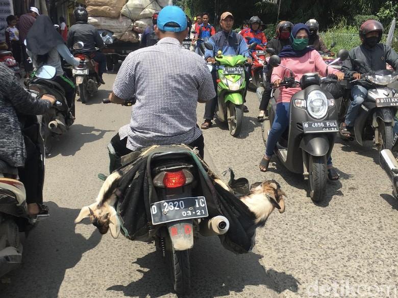 Ada-ada saja aktivitas para pengendara yang melintas di jalan. Mulai dari pengendara motor yang membawa kambing hingga mobil dengan muatan berlebih.