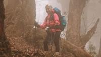 Nikita juga melakukan trekking via jalur Mardi Himal. Diketahui, jalur Mardi Himal merupakan satu dari sekian rute di kawasan Annapurna (nikitawillyofficial94/Instagram)