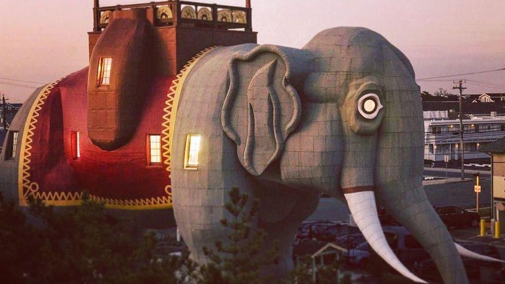 Foto: Hotel Ini Tawarkan Sensasi Menginap di Dalam Gajah, Unik Banget