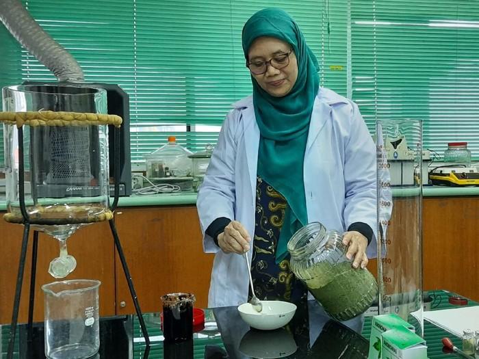 Ketua Departemen Farmakognisi dan Fitokimia, Dr. Aty Widyawaruyanti, M.Si., Apt