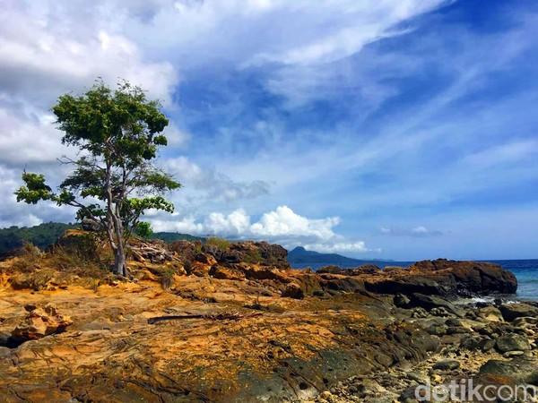 DiPantai Batu Taka Urung, pengunjung juga dapat menikmati hembusan semilir angin laut, sembari duduk di bawah nyiur yang melambai-lambai (Foto: Abdy Febriady/detikcom)
