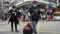 Seekor anjing peliharaan di Hong Kong dikarantina usai positif virus corona COVID-19. Anjing itu diduga terinfeksi corona dari sang majikan.