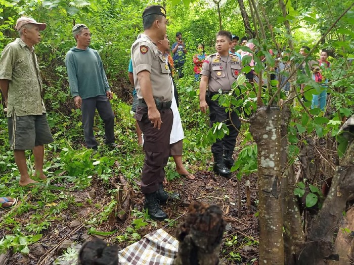Lokasi penemuan petani di Barru, Sulsel, tewas terkena kawat listrik jebakan hama babi (dok. Istimewa)