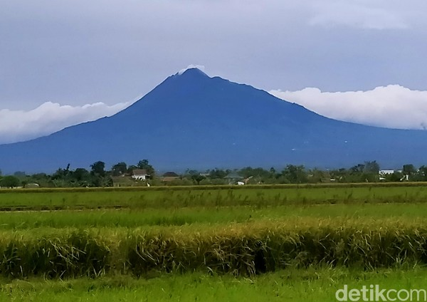 Bentuk pertama adalah strato atau kerucut. Nah, bentuk gunung seperti ini mudah kita jumpai di Indonesia, misalnya Gunung Merapi. (Achmad Syauqi/detikcom)
