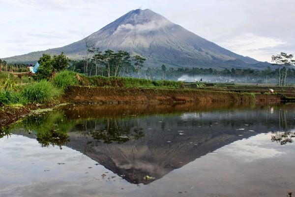 Gunung Semeru juga berbentuk strato. Gunung api strato terbentuk akibat erupsi efusif (lelehan) dan eksplosif (letusan). Letusan gunung ini akan disertai dengan suara dentuman atau ledakan dan juga semburan lava. (Foto: ANTARA FOTO/Umarul Faruq)
