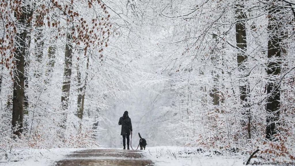 Eropa Lalui Musim Dingin Paling Hangat Sepanjang Sejarah