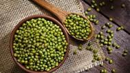8 Makanan Pelancar ASI yang Alami dan Efektif untuk Ibu Menyusui