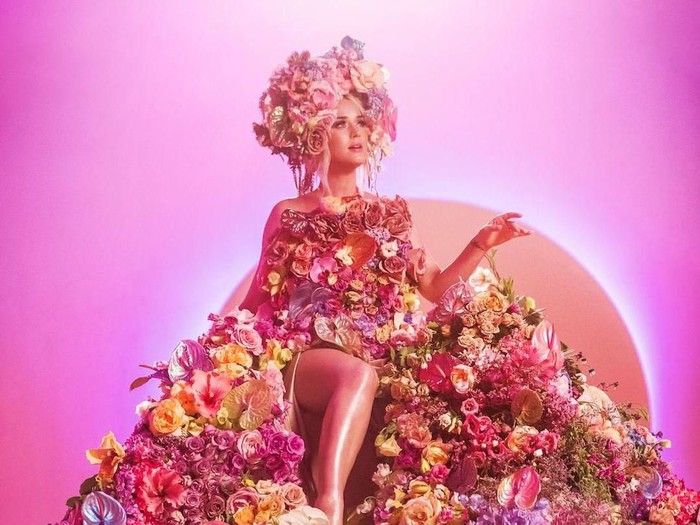 Katy Perry Hamil