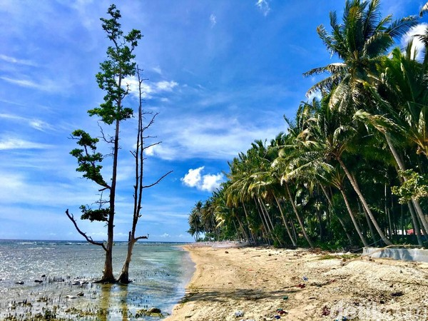 Mampirlah kePantai Batu Taka Urung untuksekadar beristirahat sambil memandang keindahan panorama alam pantai, dengan pasirnya yang putih dan lautnya yang biru (Foto: Abdy Febriady/detikcom)