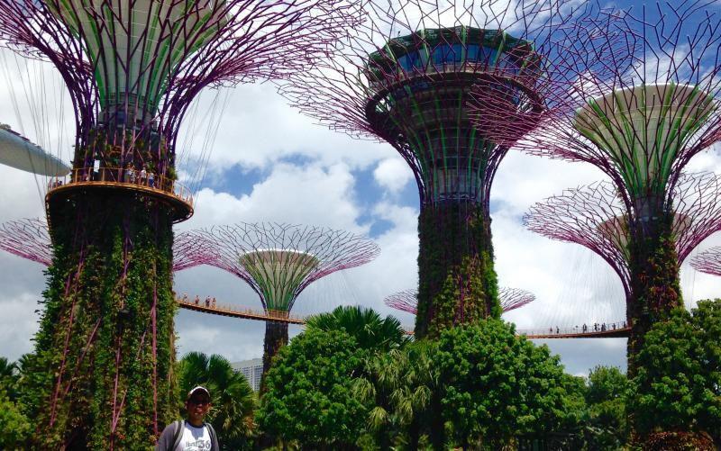 Gardens By The Bay, Taman Ciamik Di Jantung Kota Singapura