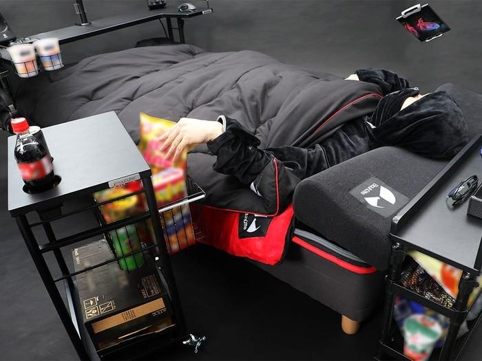 Petani Semut Gamer Tempat Tidur