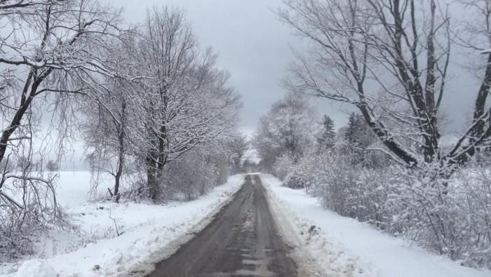 Potret Musim Dingin di Kanada, Penuh Salju Menawan