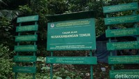 Di Cagar Alam Nusakambangan bagian Timur misalnya, traveler dapat menjumpai sejumlah objek wisata sejarah peninggalan Portugis yang juga sempat dihuni Belanda dan Jepang (Randy/detikcom)