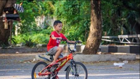 Sehat Bersepeda