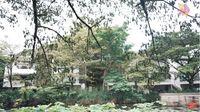 Rumah Nyaman Irish Bella dan Ammar Zoni Bernuansa Alam dan Bali