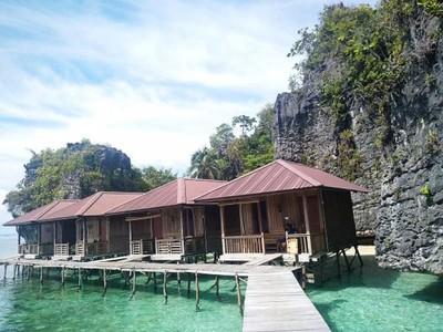 Rekomendasi Homestay & Tempat Diving Eksotis di Misool